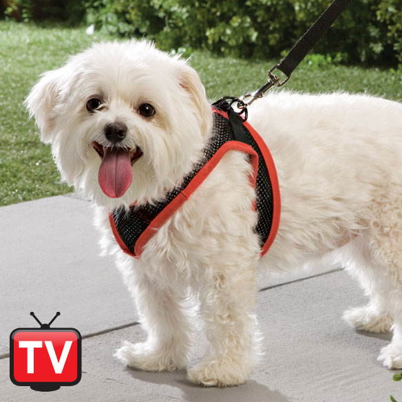 Mesh Dog Harness With Leash