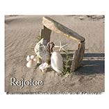 Nature Inspired - Seashore Nativity Card Set of 20