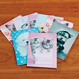 View All - Rachel Hale Cat & Dog Notecards