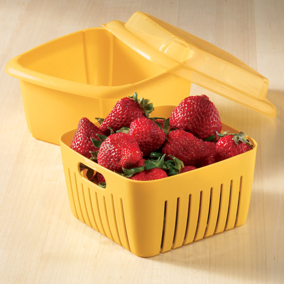 Berry Storage Box