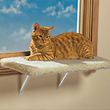 Pet Toys & Supplies - Cat Window Perch