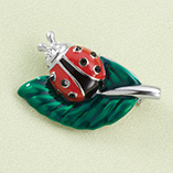 Apparel & Jewelry - Ladybug Pin