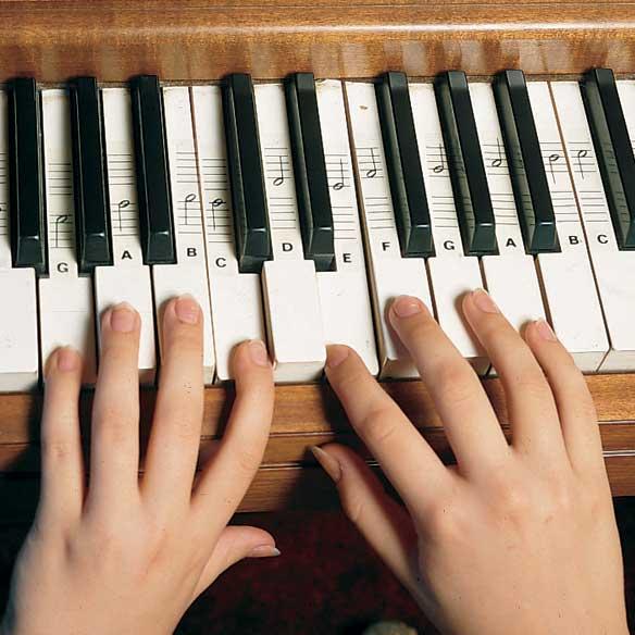 Keyboard Decals®