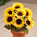 View All Flags, Spinners & Outdoor Decor - Silk Sunflower Bush