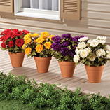 View All Flags, Spinners & Outdoor Decor - Artificial Mums
