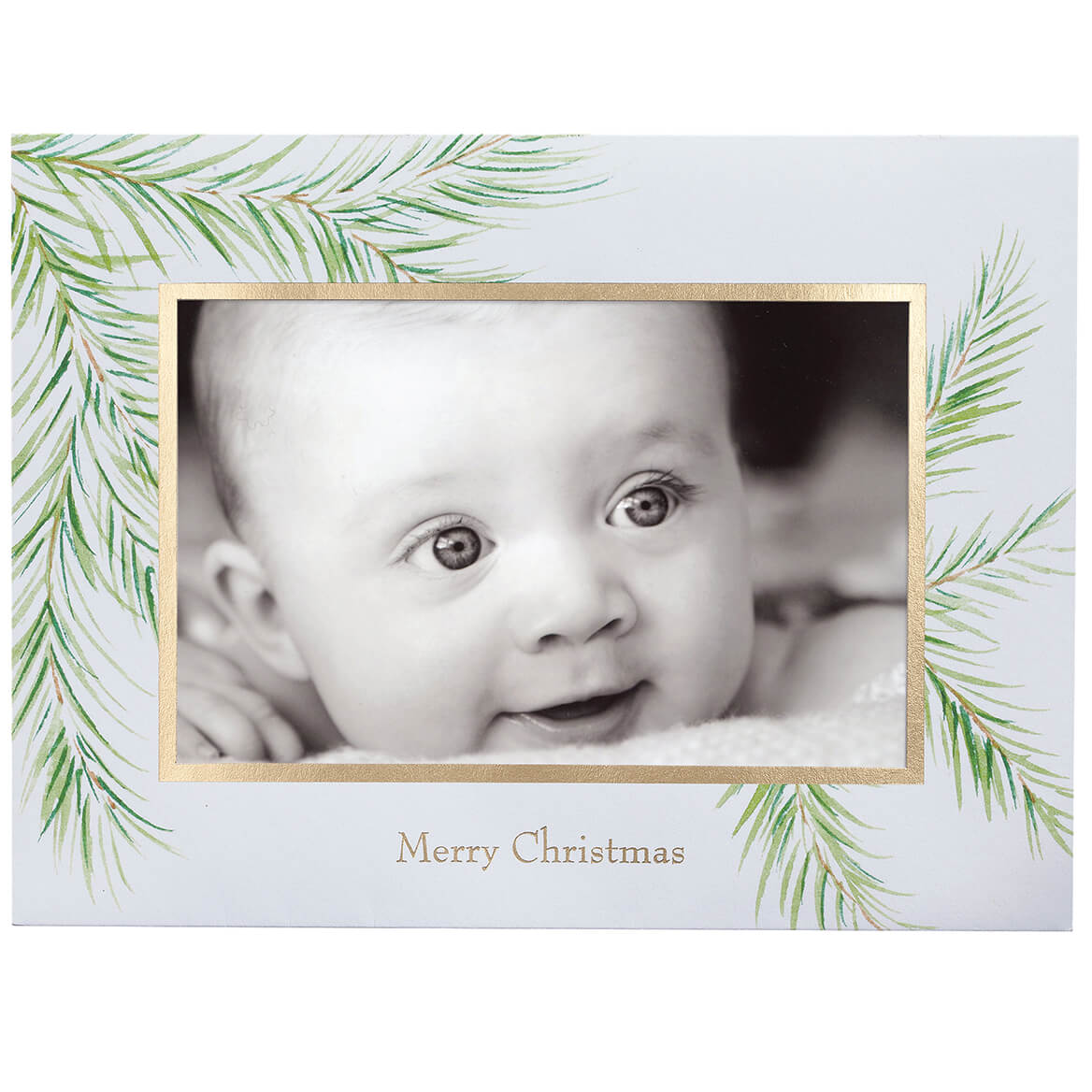 Watercolor Pine Photo Christmas Card Set of 18-345962
