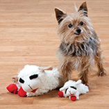 Pet Toys & Supplies - Lamb Chop Dog Toy Set of 2
