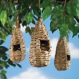 Birdfeeders & Pest Control - Bird's Nests - Set Of 3