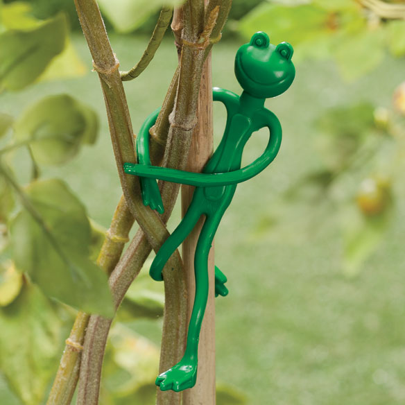 Frog Ties Set of 4