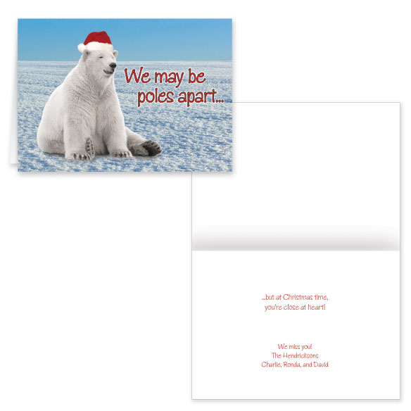 Polar Bear Christmas Card Set of 20