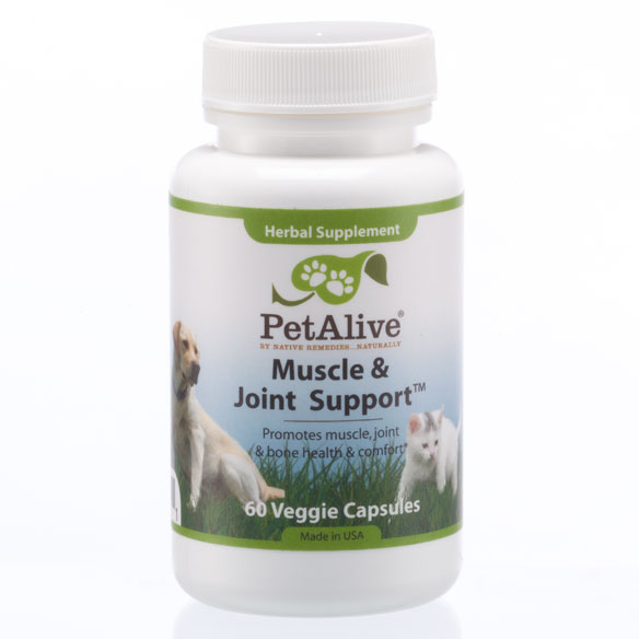 PetAlive® Muscle and Joint Support-S™
