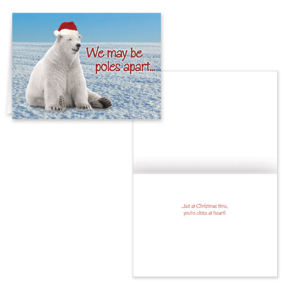 Polar Bear Greetings Christmas Card Set of 20 Non Pers.