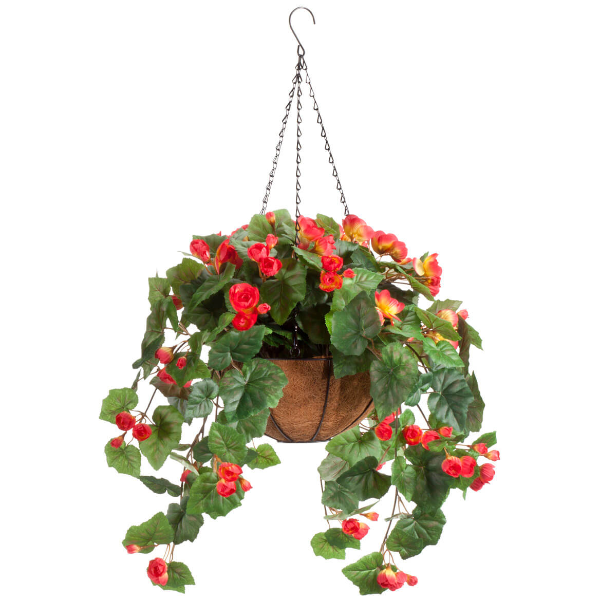Fully Assembled Begonia Hanging Basket by OakRidge™ Outdoor