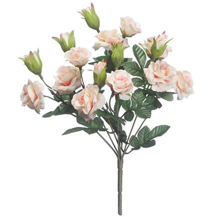 Mini Rose Bush By Oakridge™ 359646 ...