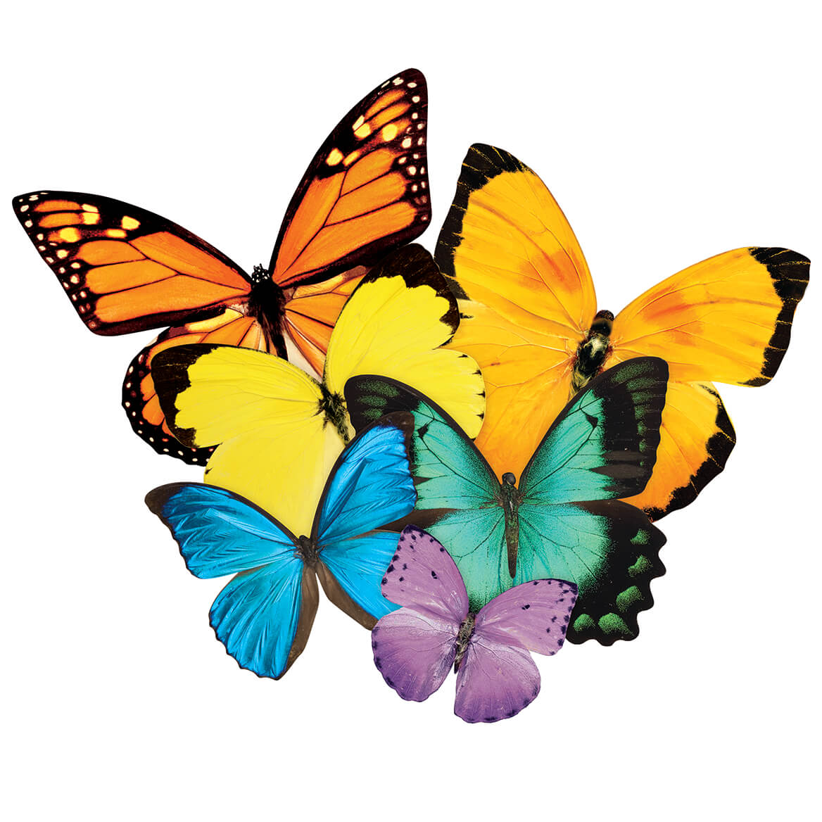 Butterfly Shaped Puzzle 524 Pieces